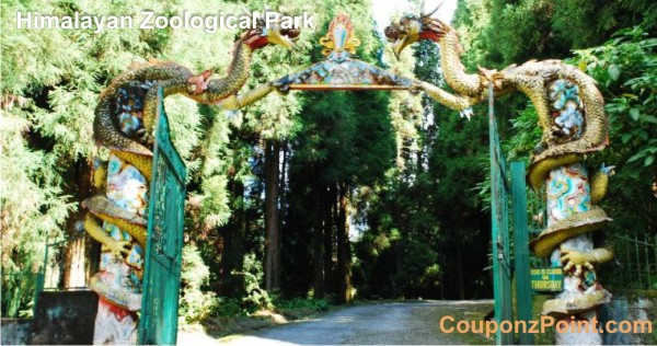 himalayan zoological park gangtok sightseeing tourist places