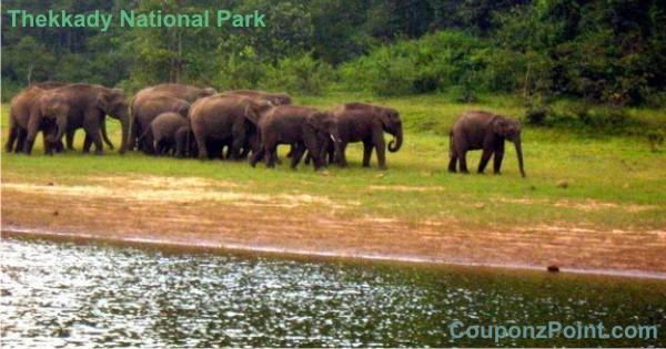 Thekkady National Park